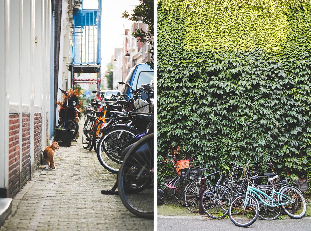 Street details in Amsterdam