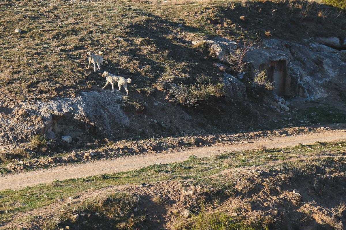Cappadocia-43