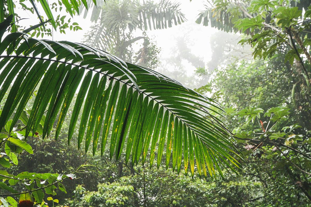 Costa Rica-108