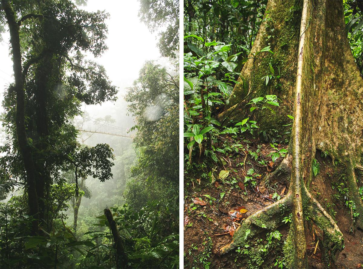 Costa Rica-110