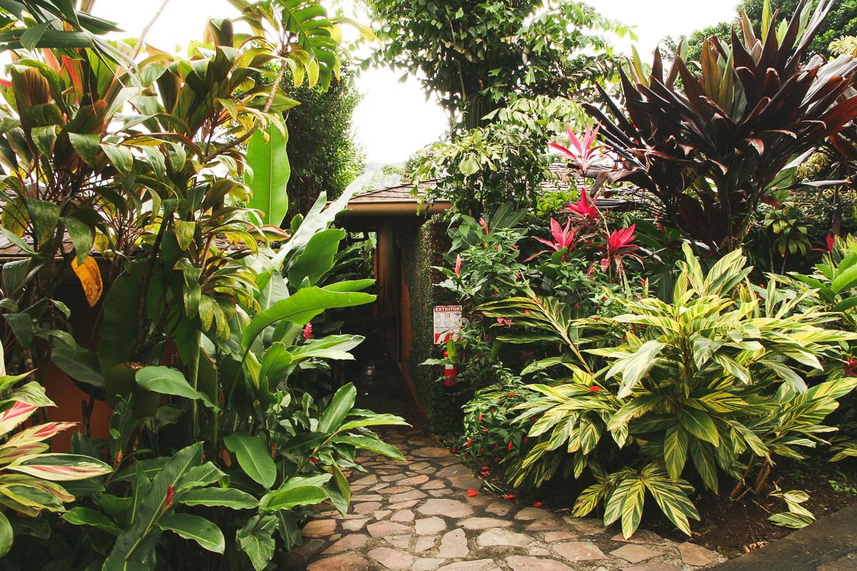 Costa Rica-136