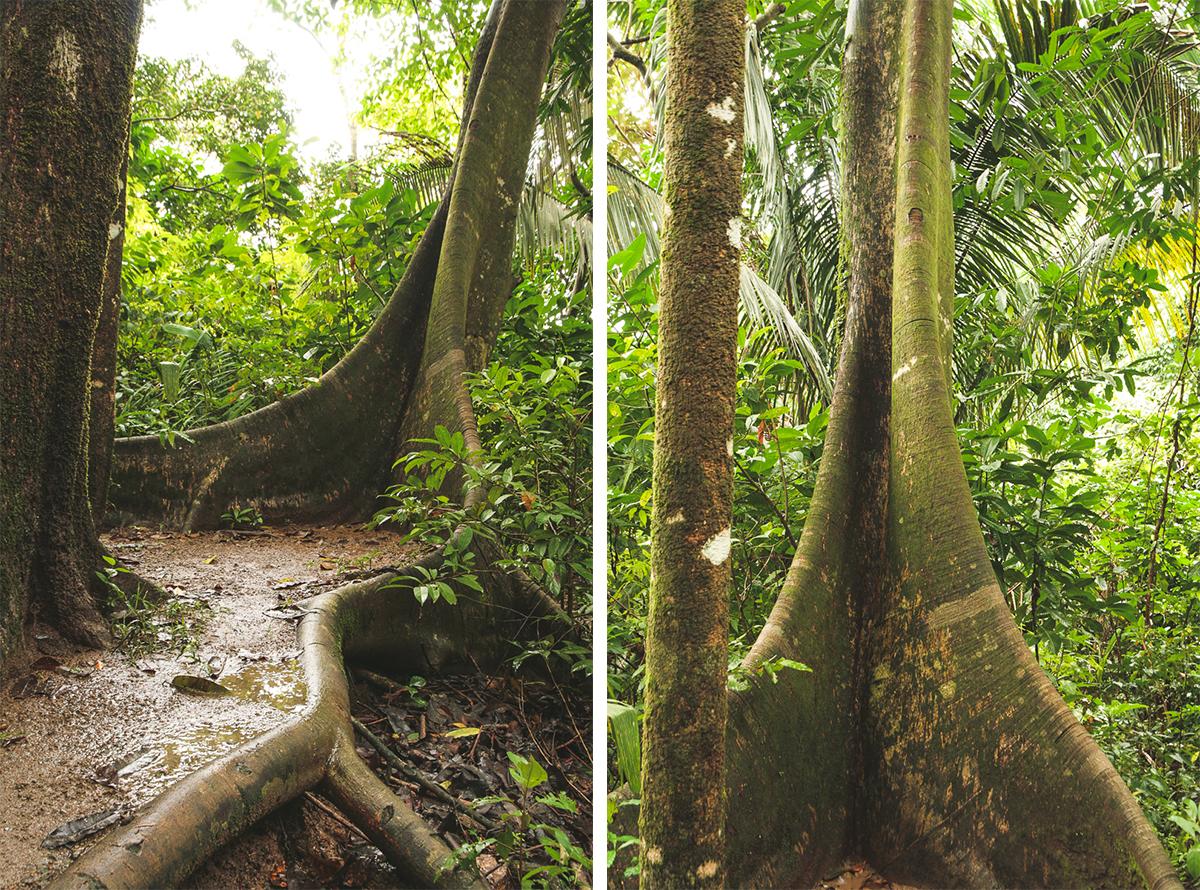 Costa Rica-40